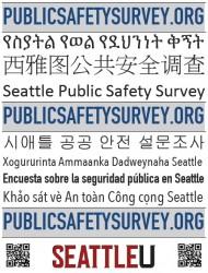 Public-Safety-Survey