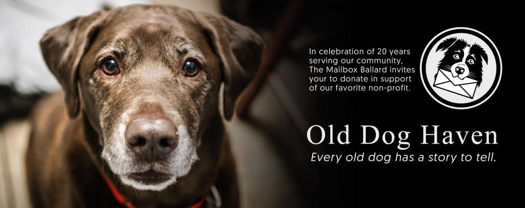 Support Old Dog Haven